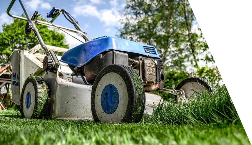 Iberasta - Gestão de condomínios - Limpeza e jardinagem