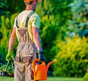 Iberasta - Gestão de condomínios - jardinagem